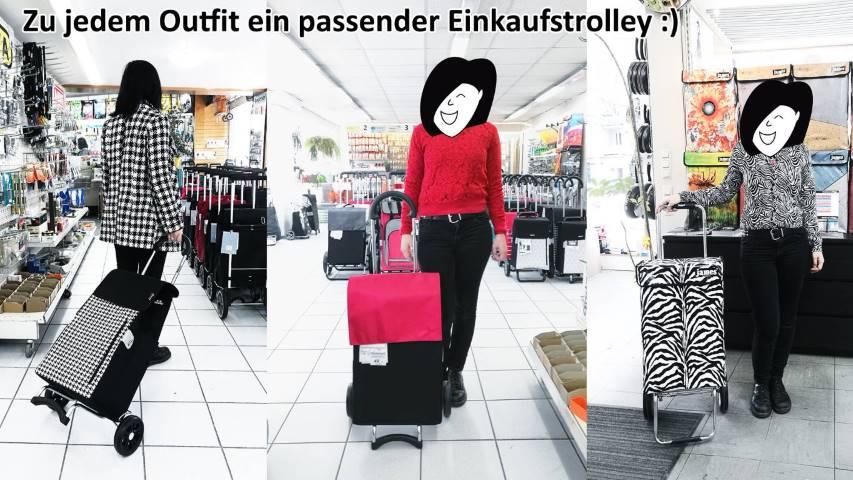 einkaufstrolley-modern